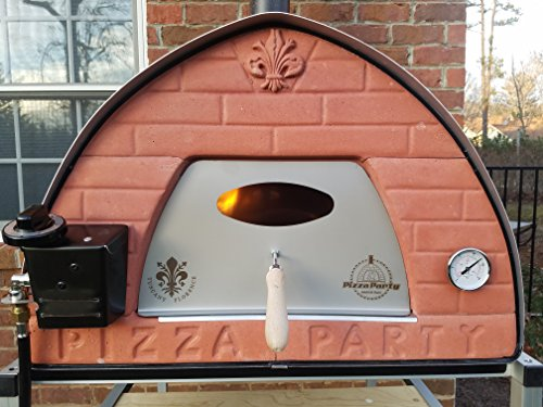 Passione gas fired pizza oven made - Gas or wood use