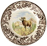 Spode 1597075 Woodland Collection Salad Plate, Multicolor