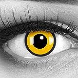 Funnylens - 1coppia di lenti a contatto colorate giallo/nero, con contenitore, perfette per Halloween e carnevale, non graduate