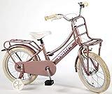 Vélo Enfant Fille 16 Pouces Excellent Frein Avant sur Le Guidon et Le Frein Arrière...