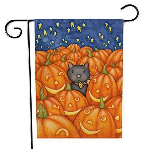 Halloween Lichter Für Verkauf - HäNgefahne, Chshe TM, Halloween Gartenfahne KüRbis