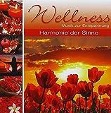 Wellness-Harmonie der Sinne