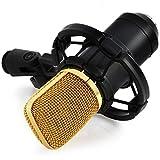 Yooyoo BM 700 Kondensatormikrofon mit Spinne, Aufnahmen in Studioqualität schwarz