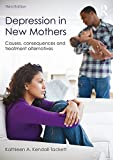 Depression in New Mothers, 3rd Edition: Causes, Consequences and Treatment Alternatives