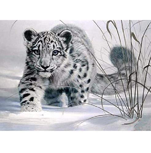 YueQiSong Steinmalerei Kit 5D DIY Diamantmalerei Diamant Mosaic Crafts Kreuzstich Diamant Stickerei Snow Leopard Wandaufkleber Dekor 30X40 cm