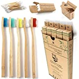 Bamboo Toothbrushes Review and Comparison