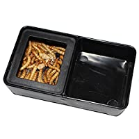 OMEM Worm Dish Mini Reptile Food and Water Bowl 2 in 1 by OMEM