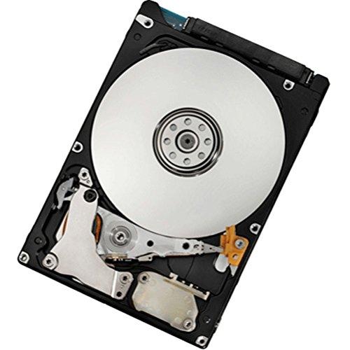 Ibm Sas-festplatte ('IBM 00y2431900GB SAS Festplatte-Festplatten (2,5, 900GB, 10.000U/min, SAS, Festplatte))