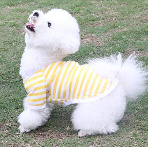 QiCheng&LYS Camiseta de manga corta para perro, diseño de cachorro, 4 colores...