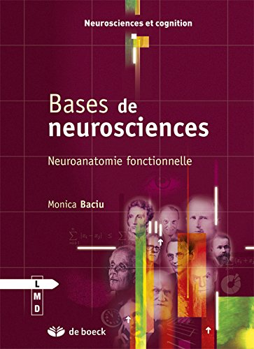Bases de neurosciences - Neuroanatomie fonctionnelle