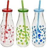 3x Glas Trinkflasche mit Deckel + Strohhalm 0,5l bunte Glas Flasche Punkte