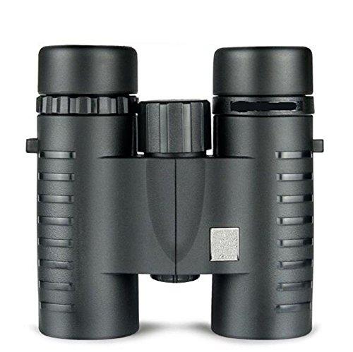 SHULING Teleskop Konzert High-Definition-Two-Barrel Schimmer Nacht Vision Handy Kinder Erwachsene Augenpflege Brille, Schwarz, Grün Film (Für Erwachsene Nacht-vision-brille)