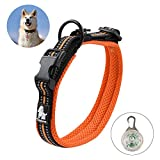 RCruning-EU Hundehalsband Nylon Dog Collar Reflektierendes für große, mittelgroße, Mittlere Kleine Hunde Größen-M-Orange (40-50CM)