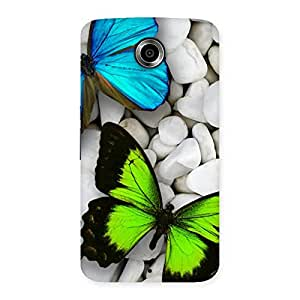 The Awesome Colorfull Butterflies Back Case Cover for Nexsus 6