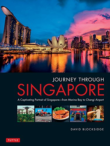 Journey Through Singapore: A Captivating Portrait of Singapore - From Marina Bay to Changi Airport -