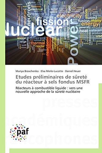Etudes préliminaires sûreté du réacteur à sels