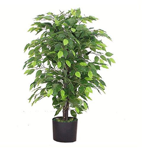 Leaf Design UK...
