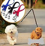 genonaute Double Match Nylon Hund Seil Hund Kette (rot)