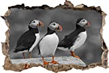 Pixxprint 3D_WD_S4140_62x42 witzige Papageitaucher auf Felsen Wanddurchbruch 3D Wandtattoo, Vinyl, schwarz / weiß, 62 x 42 x 0,02 cm