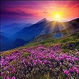 3D Wallpaper Foto Murali - Picco di fiori viola - 3D Tv Divano Sfondo Muro Soggiorno Camera Da Letto Pareti Della Carta Da Parati 300cm(W) x210cm(H)-6 Stripes