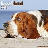 Basset Hound Calendar 2018 (Square)