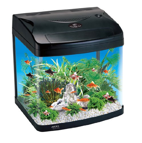 Aquarline Panavision Aquarium Kit Complete with Lighting and Filter System, 48 Liter, Black