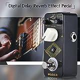 Festnight MOOER EchoVerb Digital Delay Reverb Gitarre Effektpedal True Bypass...