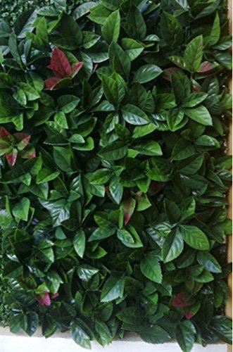 12-plaques-carrees-clipsables-en-red-robin-dentele-dim-dalle-50-cm-x-50-cm-pegane