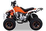 Kinder Quad 125 ccm orange/weiß Speedy - 2