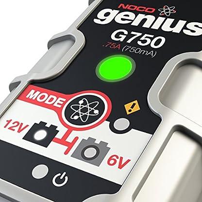 51X%2BAVhRQML. SS416  - NOCO Genius Cargador Inteligente de Batería