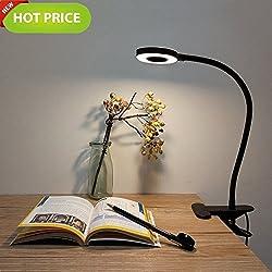 Lypumso Lampe de bureau à LED, lumière froide/chaude à 2 niveaux et à 2 niveaux, commutateur de lumière naturelle Pince à ampoule de bureau à pince réglable
