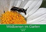 Wildbienen im Garten (Wandkalender 2019 DIN A3 quer): Faszinierende Nahaufnahmen kleiner Nützlinge (Monatskalender, 14 Seiten ) (CALVENDO Tiere)