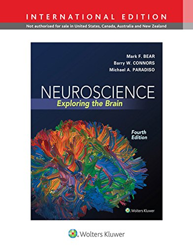 Neuroscience. Exploring The Brain (International Edition)