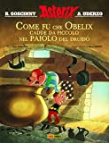 Come fu che Obelix cadde da piccolo nel paiolo del druido