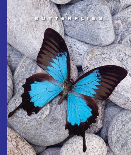(Butterflies (The World of Insects) (English Edition))