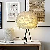 lampada da camera da letto di studio di piume Bianco della maniera personalizzata creativo Credenza lampada di studio nordico, luce calda, interruttore di pulsante