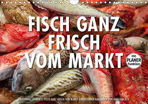 Emotionale Momente: Frischer Fisch vom Markt. (Wandkalender 2020 DIN A4 quer): Ingo Gerlach hat eine Serie von Foto über frischen Fisch auf einem ... 14 Seiten ) (CALVENDO Lifestyle)