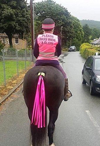 Preisvergleich Produktbild Horse and Rider Safety Sichtbänder The Wiz Viz für Pferdeschweif,  hohe Sichtbarkeit,  fluoreszierend,  fluoreszierendes pink