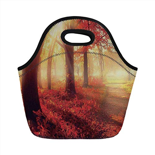 Portable Bento Lunch Bag,Woodland Decor,Sun Shining Through Misty Old Forest in Fall Season Morning View Dreamy Scenic Picture,Yellow Red,for Kids Adult Thermal Insulated Tote Bags (Ipad-coach Fall)