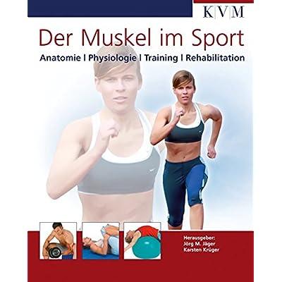 PDF] Der Muskel im Sport: Anatomie - Physiologie - Training ...