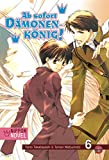 Ab sofort Dämonenkönig! (Nippon Novel), Band 6