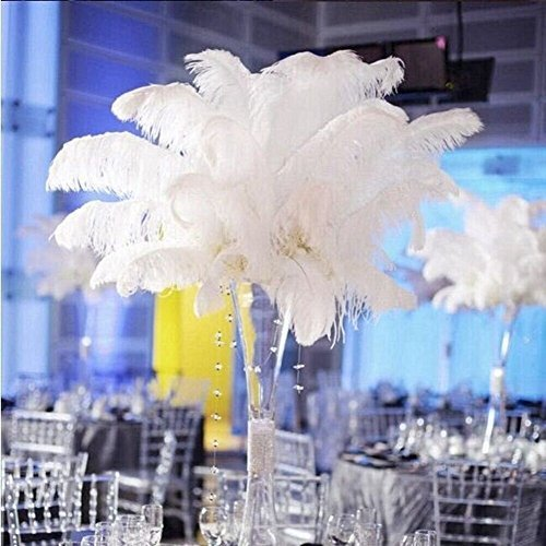 Shekyeon 18-20inch 45-50cm Ostrich Feather Wedding Table Decoration Party Festival Supplies (White) by Shekyeon Plume Vase