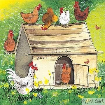 chickens-hens-cockerels-chicken-coop-blank-card-by-alex-clark