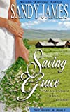 Saving Grace (Safe Havens Book 1) (English Edition)