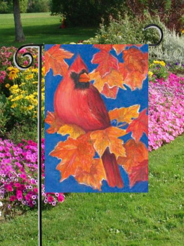 Autunno Cardinale giardino dimensioni 30,5x 45,7cm Decorative (Cardinale Giardino)