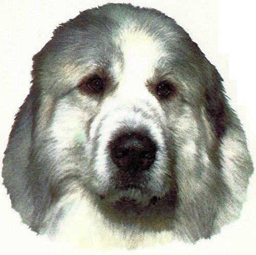 I Love My Dog pour chien de montagne des Pyrénées Tasse I Love My Great Pyrenees Tasse en porcelaine Motif Décoré à la Main au Royaume-Uni Livraison gratuite au Royaume-Uni pour chien