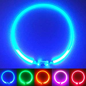 PetSol Ultra Bright USB Rechargeable LED Dog Safety Collar - Cut To Fit Any Size - Rechargeable Lithium Battery - Increased Visibility & Safety For Your Pets (Blue)