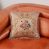 RllKY petit coussin de support lombaire coussin oreiller canapé Chorhaupt,Braun,50X50cm