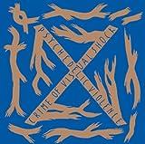 Songtexte von X JAPAN - BLUE BLOOD