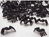 50 Black Spiders horror halloween loot toys Sprinkles